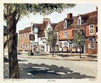 Ripley, Surrey