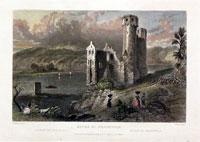 Ruins of Ehrenfels Rhine