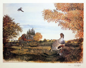 Partridge in a landscape
